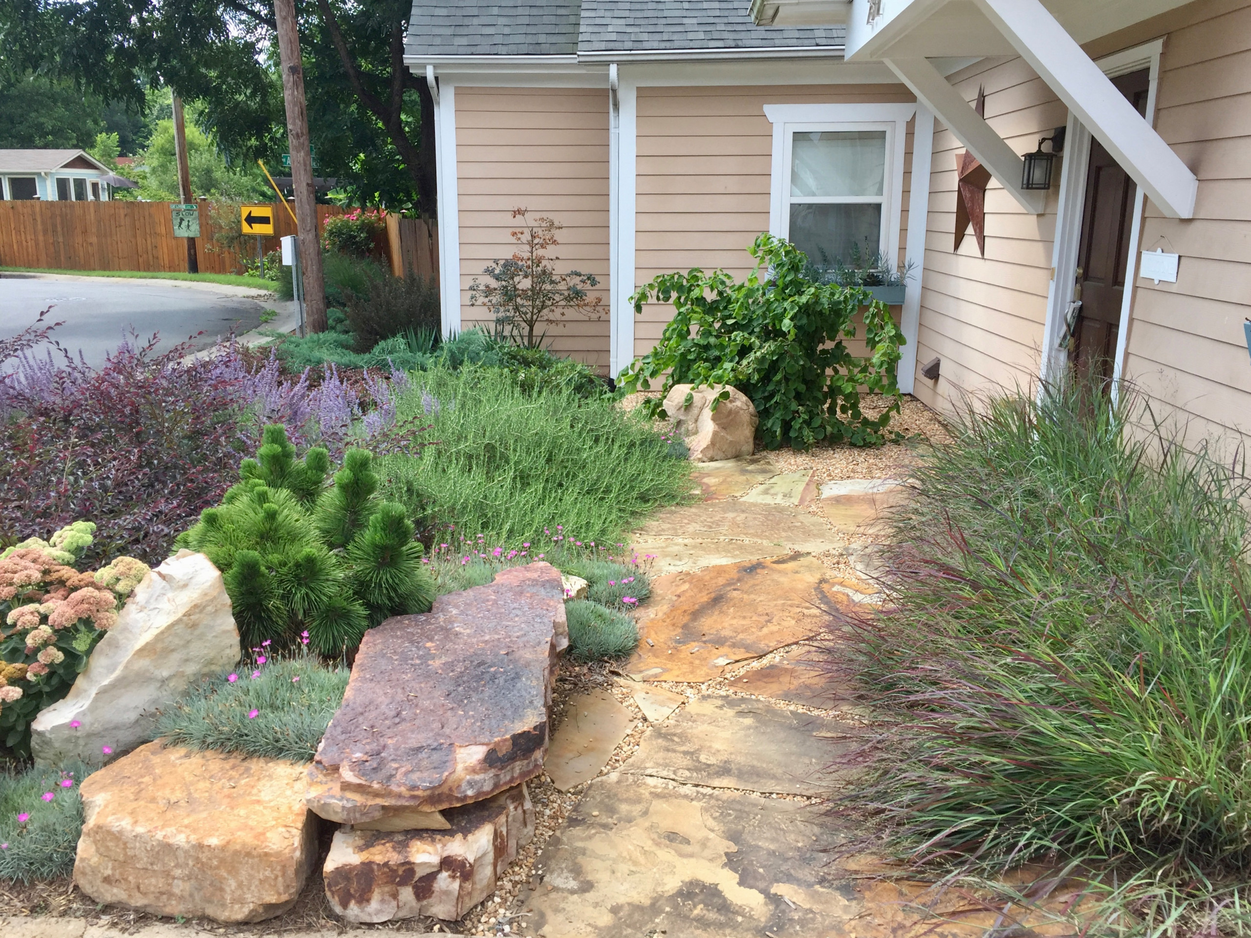 New front sidewalk, softened by textural plantings.