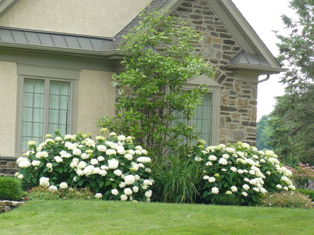 New Landscape Huntingdon Valley, Pa traditional-landscape