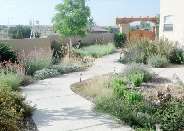 New Mexico Xeriscape Transitional Landscape Albuquerque by