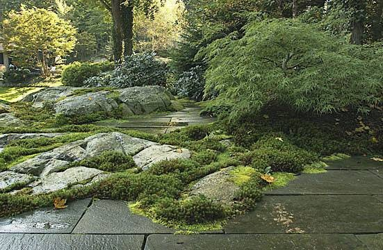 New york plantings landscape designs eclectic for Latest garden design