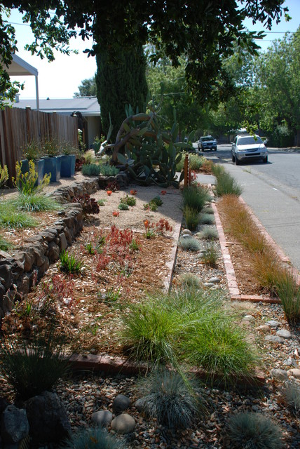 No lawn front yard - Contemporary - Landscape - san francisco - by Land Studio C