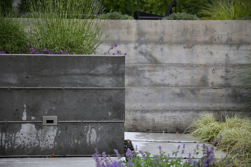 Photo of a small modern partial sun backyard landscaping in San Francisco.