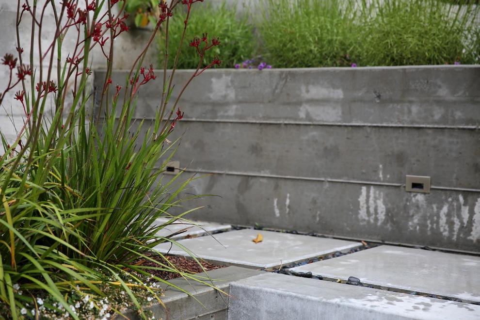 Photo of a small modern partial sun backyard landscaping in San Francisco.