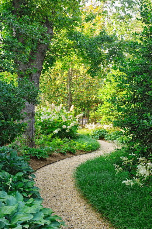 Garden path ideas for Traditional landscape