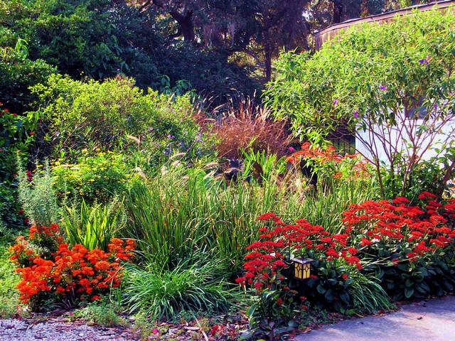 North tampa cottage garden eclectic landscape tampa for Landscape design tampa