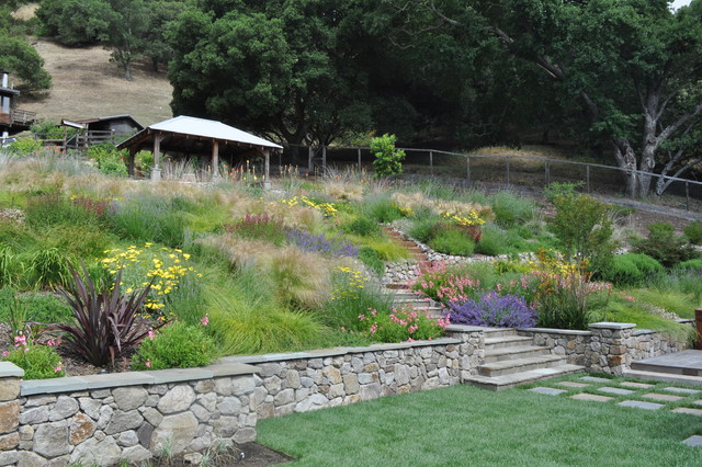 Northern california regional hillside mediterranean for Hillside landscaping