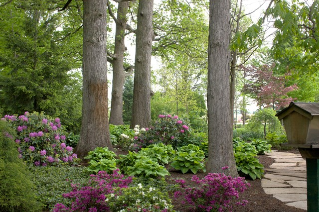 design ideas for a large traditional shade backyard stone garden path in chicago for summer - Garden Ideas Under Trees