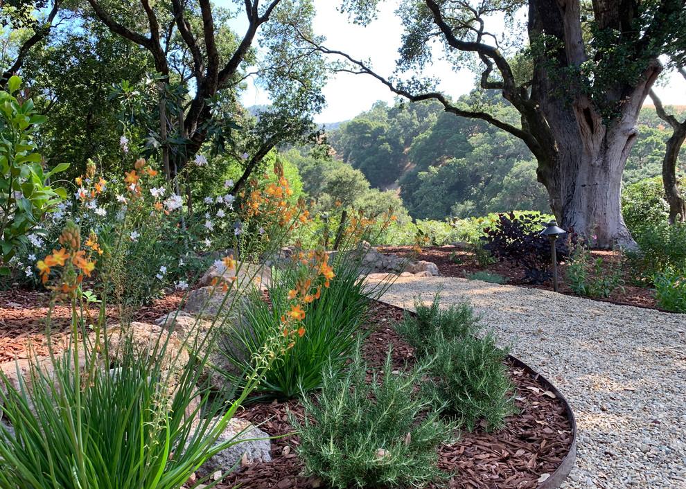 Oak Tree Setting With Hillside Views, Landscape Renovation ...