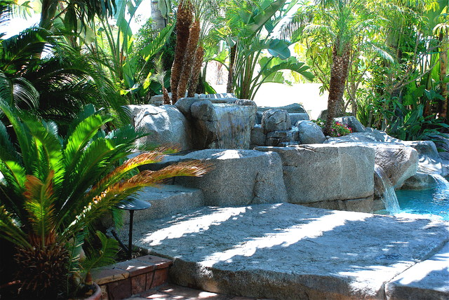 Orange County' s Exciting  Custom Pools tropical-landscape