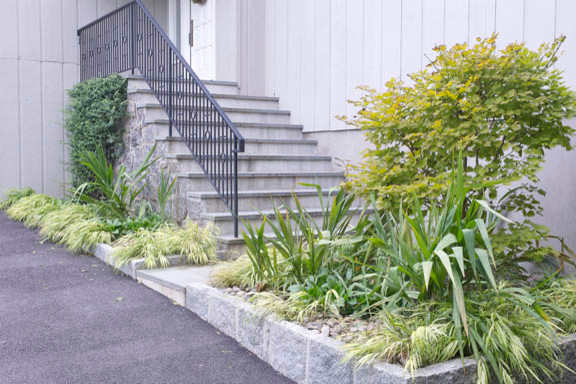 Ornamental Grass Garden Traditional Landscape new