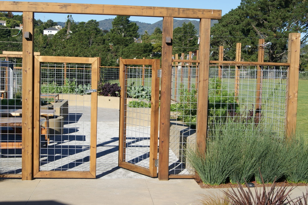This is an example of a large contemporary full sun backyard concrete paver landscaping in San Francisco.