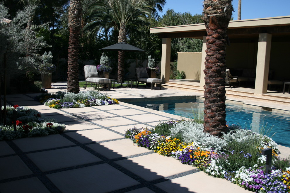 Photo of a landscaping in Phoenix.