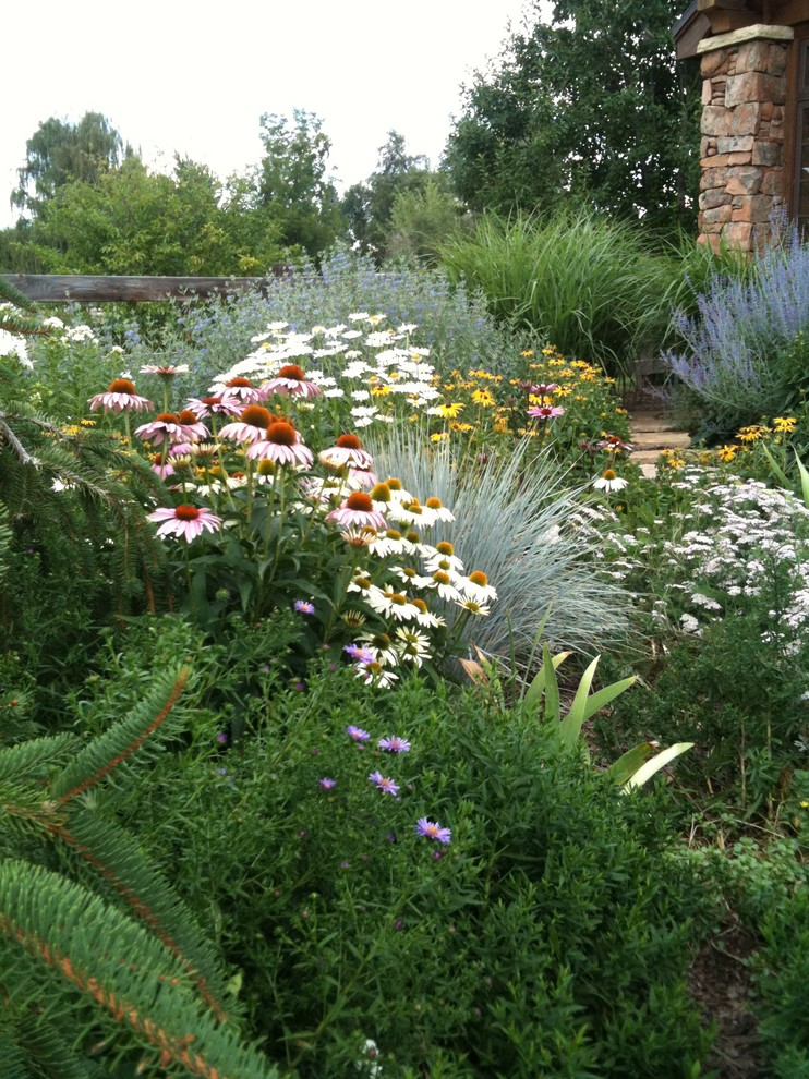 Photo of a traditional landscaping in Denver for summer.