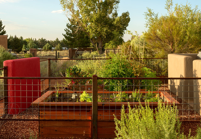 Outdoors Rooms Eclectic Landscape Albuquerque By