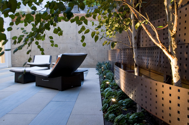 Pacific Heights contemporary-landscape
