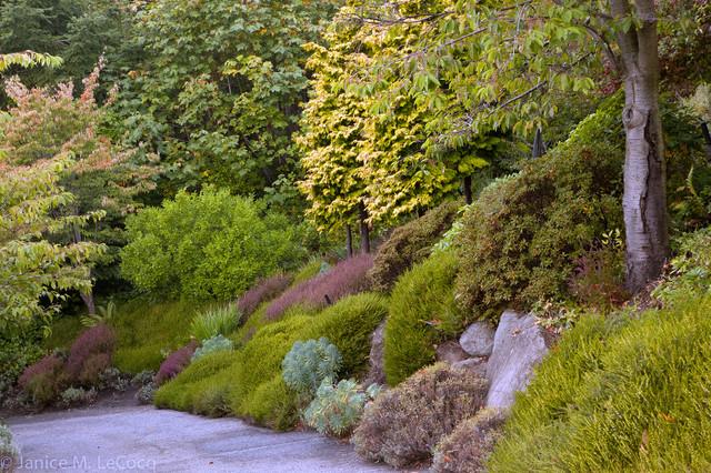 Pacific Northwest Hillside Garden Traditional Landscape