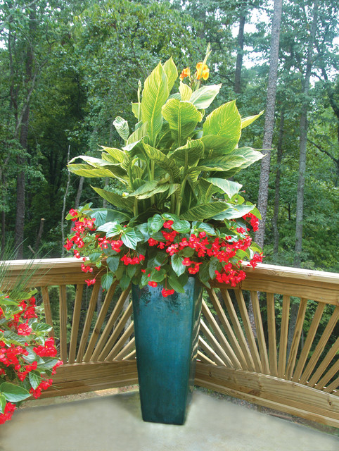 Palm Beach Container Gardens Transitional Landscape