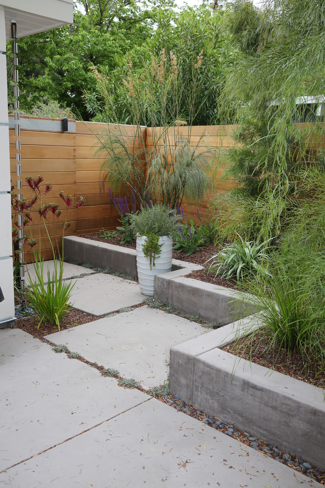 This is an example of a landscaping in San Francisco.