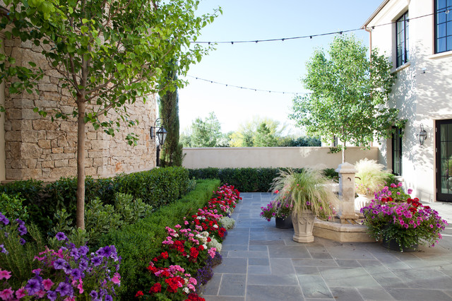 Paradise Valley - Saguaro 2012 - Traditional - Landscape - Phoenix - By BERGHOFF DESIGN GROUP