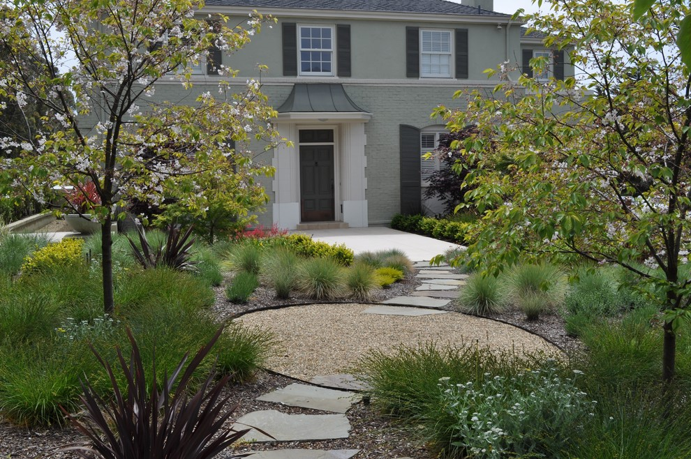Inspiration for a contemporary drought-tolerant landscaping in San Francisco.