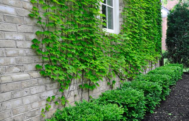 Parterre Garden Traditional Landscape Columbus by