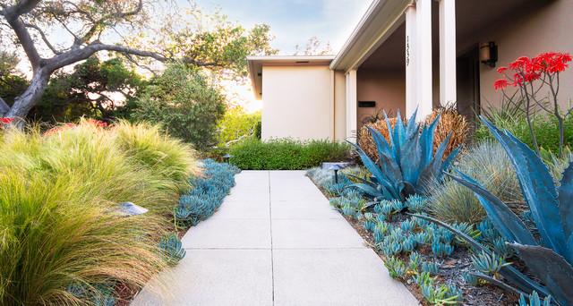 Pasadena Sustainable Planting Modern