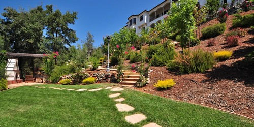 Landscaping Ideas For A Slope