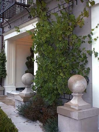 Pedersen Associates - Residential - San Francisco, CA traditional-landscape