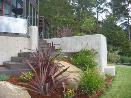 Pedersen Associates - Residential - Tiburon, CA modern-landscape