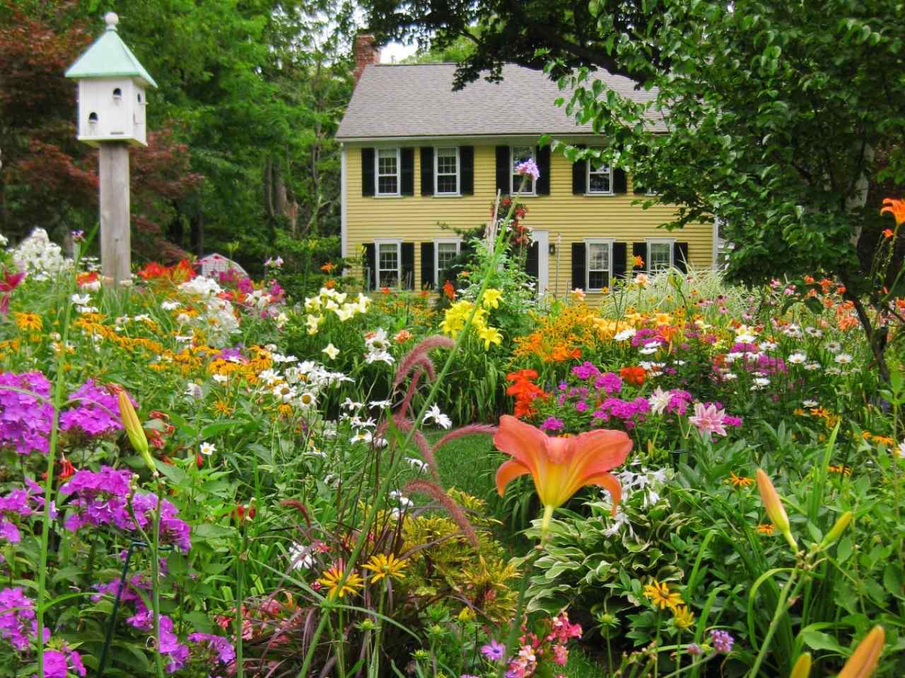 Perennial Cutting Gardens