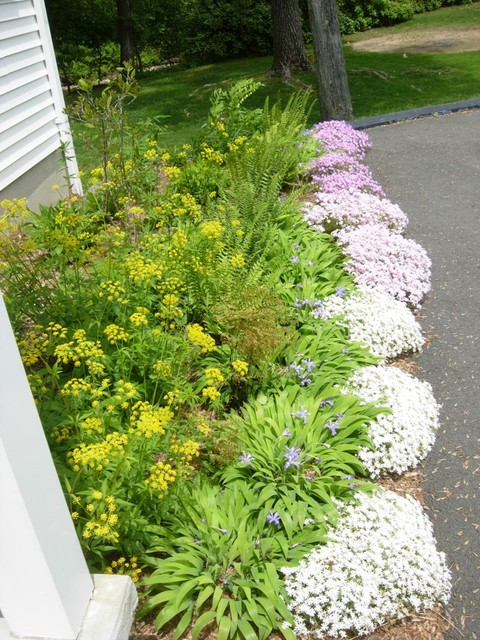 Perennial garden design driveway border contemporary for Landscape design perennial garden