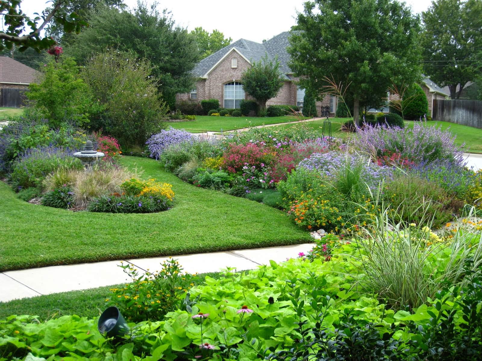 Perennial Rain Gardens