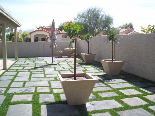 Phoenix Landscaping Projects traditional-landscape
