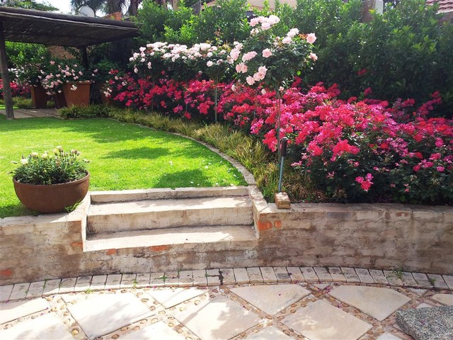 Knockout Roses Landscaping Ideas Wwwpicswecom