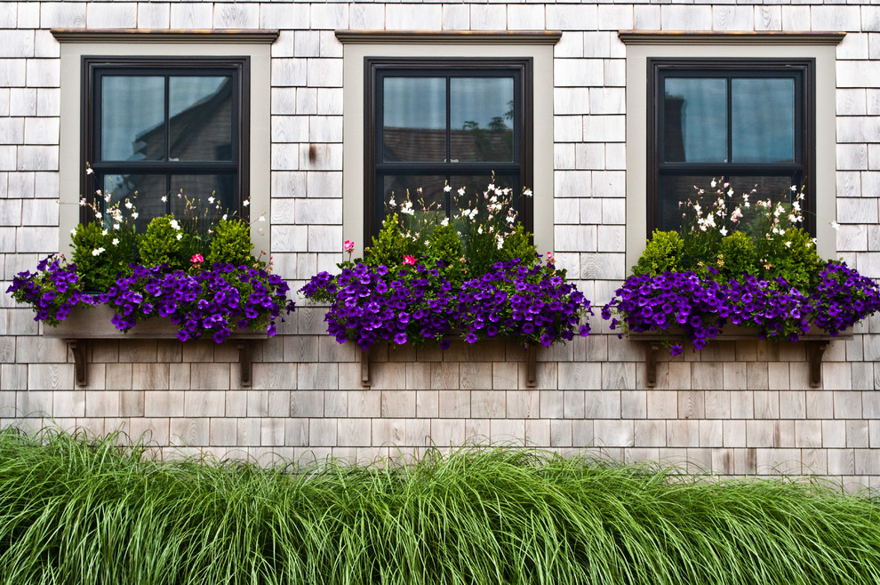 This is an example of a mid-sized traditional landscaping in Boston.