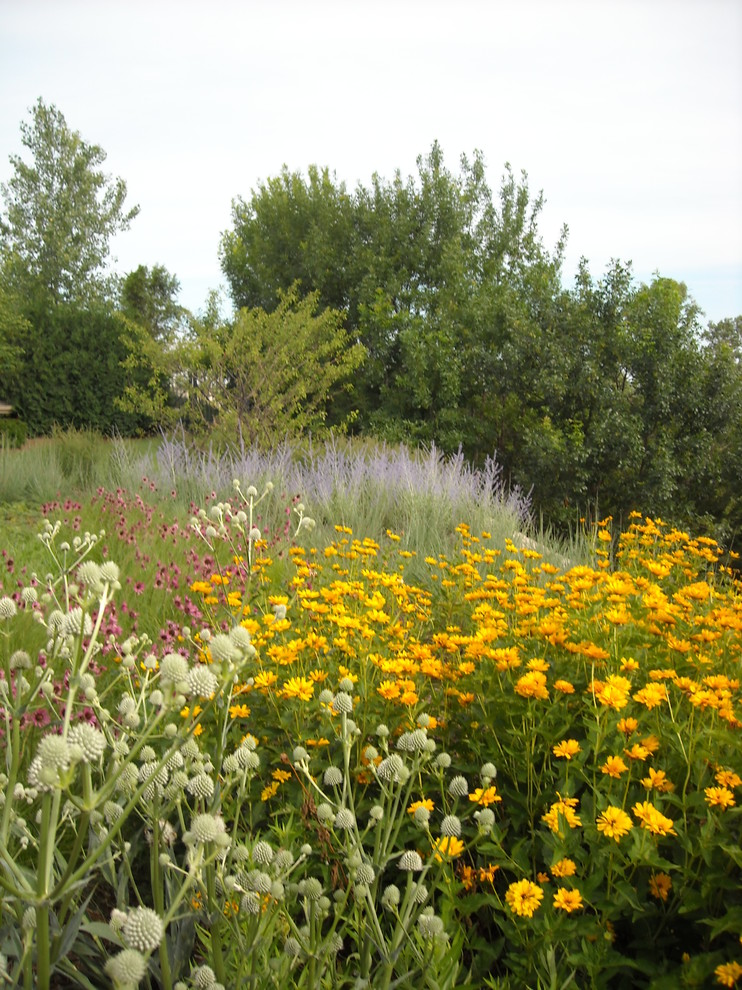 Inspiration for a huge rustic full sun backyard landscaping in Omaha for summer.