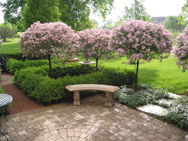 Plant bed and border ideas barrington il traditional for Great small trees for landscaping
