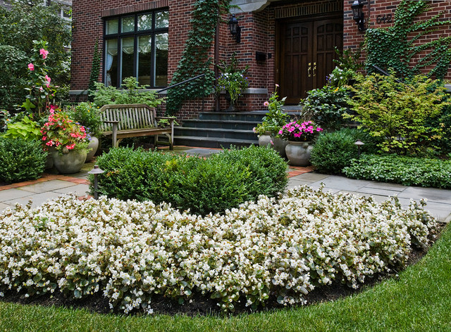 Plant bed and border ideas winnetka il traditional for Garden border plant designs