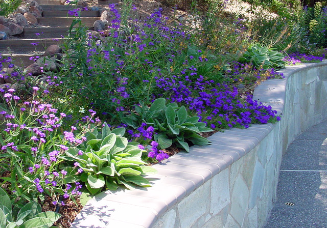 photo of a mid sized mediterranean drought tolerant and partial sun hillside landscaping in - California Garden