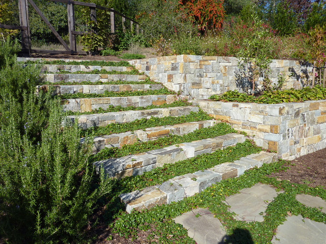 Planted Stairs Traditional Landscape