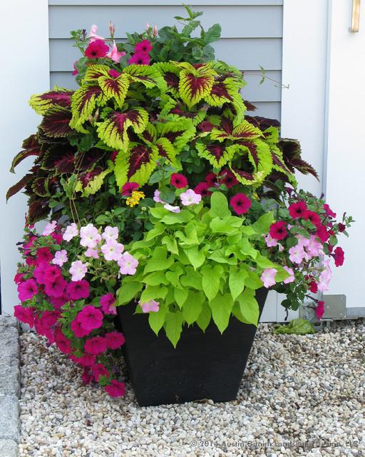 Container Gardening Ideas: Planter & Container Garden Design