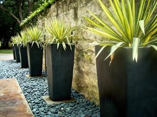 Contemporary Landscape by Austin Landscape Contractors BLUE Renovation & Landscape