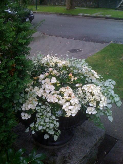 Planters - various eclectic-landscape