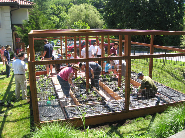 Planting Day in a Community Garden traditional-landscape