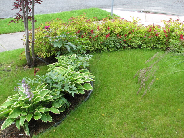 Planting design hosta astilbe and spirea traditional landscape