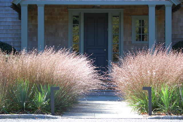 Plantings contemporary landscape new york by davis for Front yard ornamental grasses