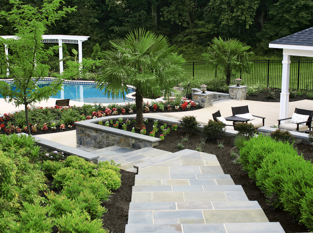 Plantings surrounding pool and pool deck tropical-landscape