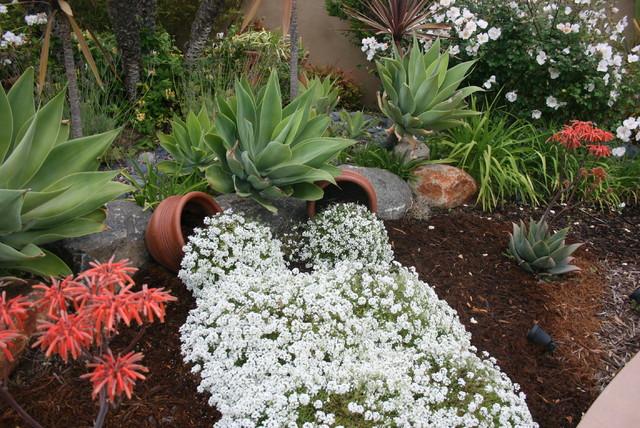 Plants traditional-landscape