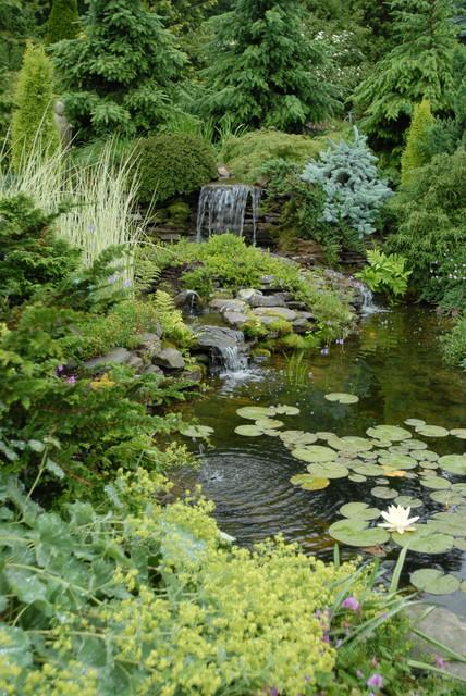 Pocket Garden traditional-landscape