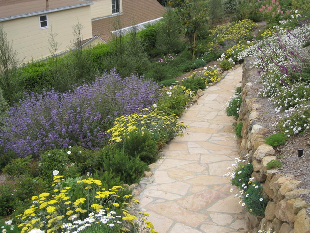 Point Loma Bayside Terrace traditional-landscape